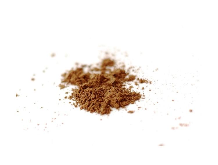reishi - ganoderma lucidum powder BIO